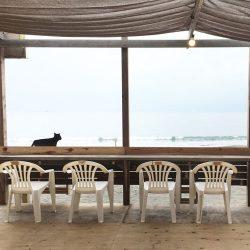 茅ヶ崎 海の家 海猫亭